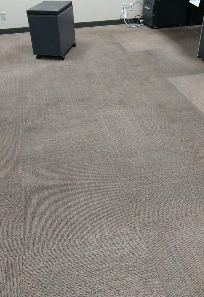 carpet crop
